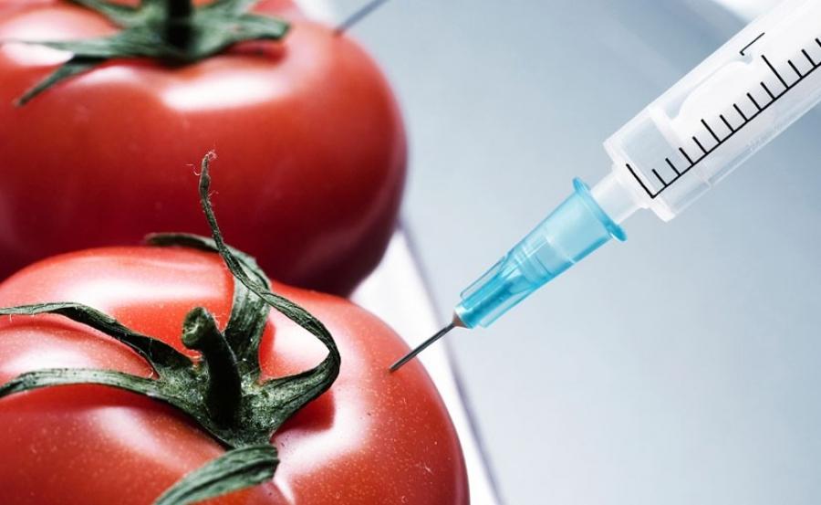 Генийн өөрчлөлттэй хүнсний бүтээгдэхүүн аюул дагуулж байна