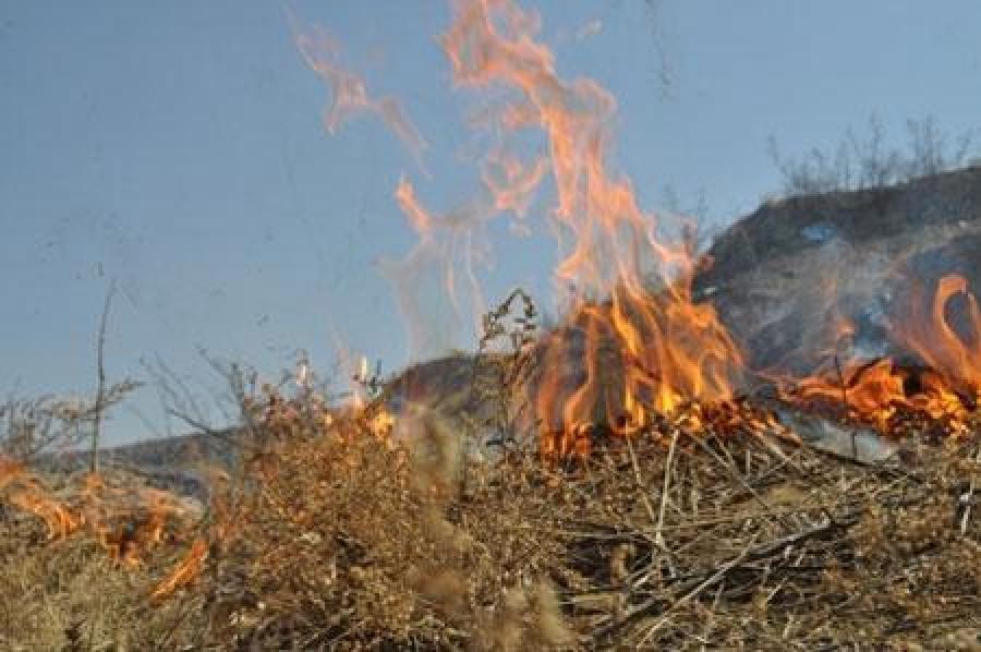 Дорнод аймгийн Булган суманд гарсан түймрийг бүрэн унтраажээ