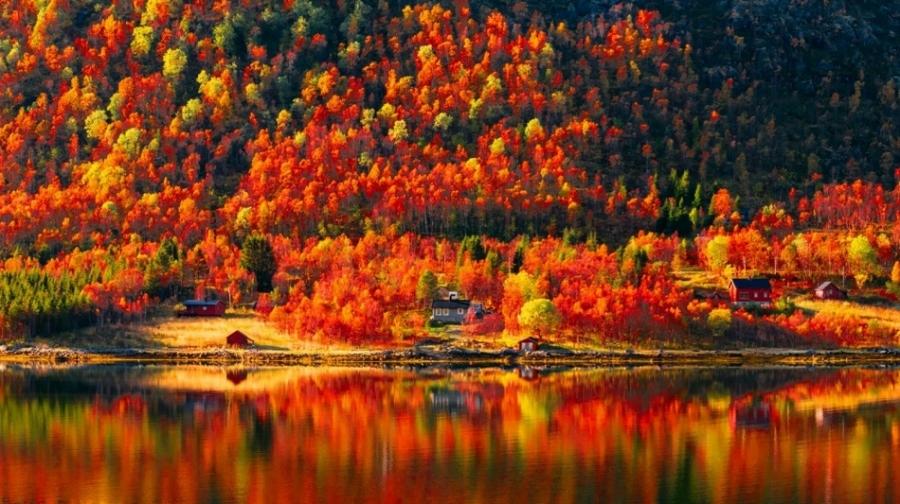 ФОТО: Намрын өнгө