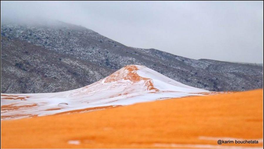 Сахарын цөлд 37 жилийн дараа анх удаа цас орлоо