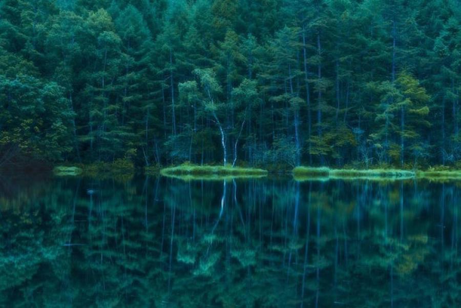 ФОТО: Үзэсгэлэнт Япон орон