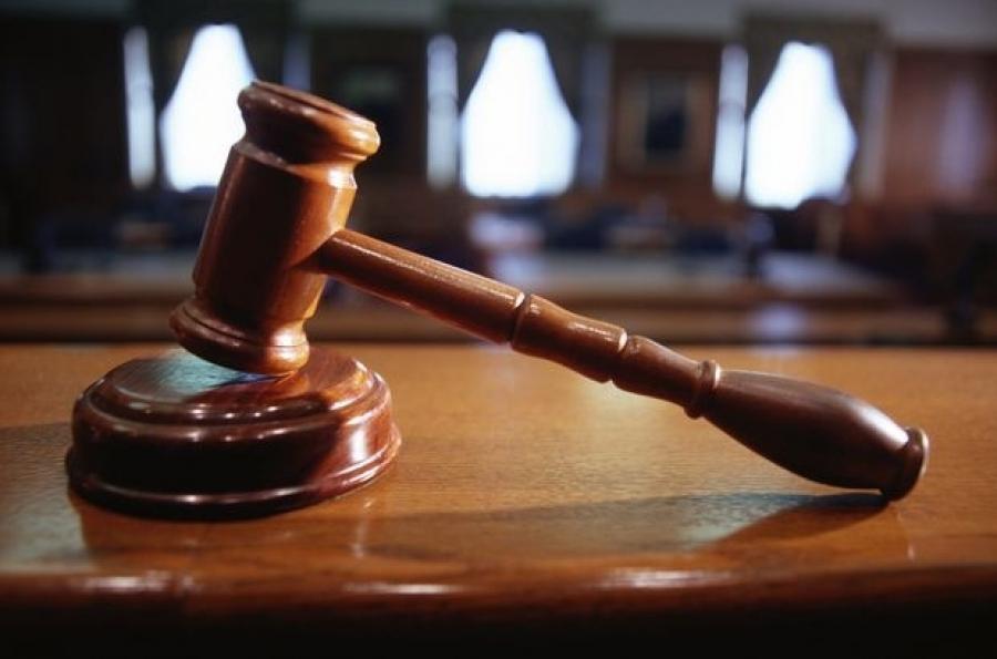 Шонхор хууль бусаар хилээр нэвтрүүлэхийг завдсан хэргийг шүүхэд шилжүүлжээ