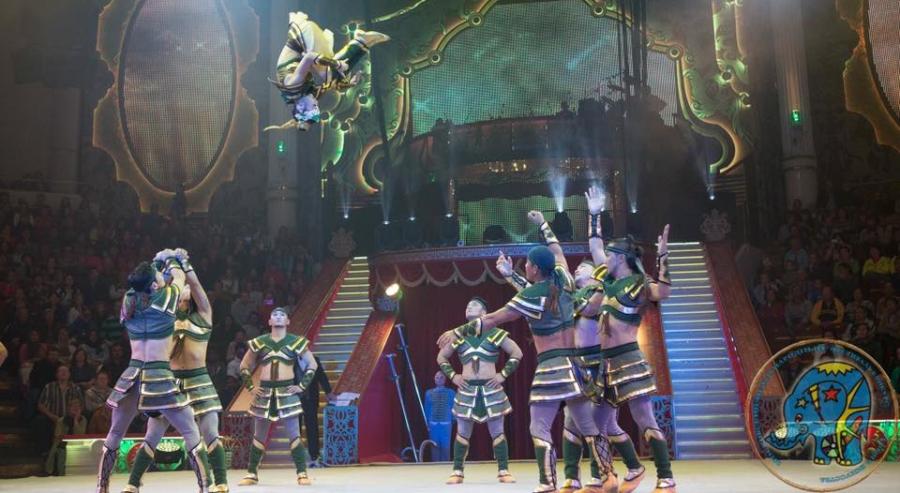 Циркчид олон улсын фестивалиас хүрэл медаль хүртлээ