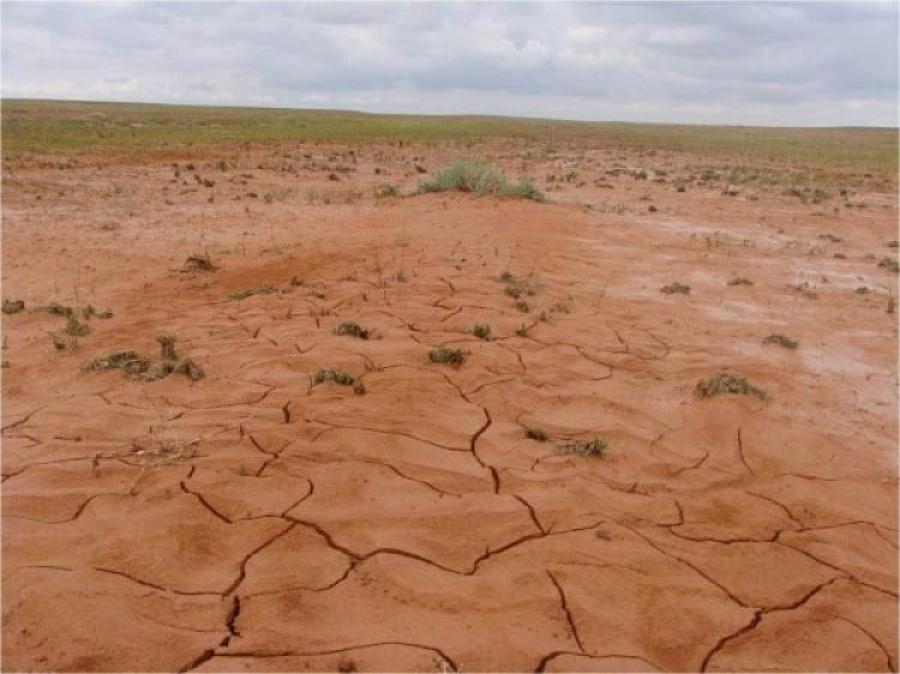 Усны чиглэлээр үйл ажиллагаа явуулдаг байгууллагуудаас хариуцлага нэхнэ