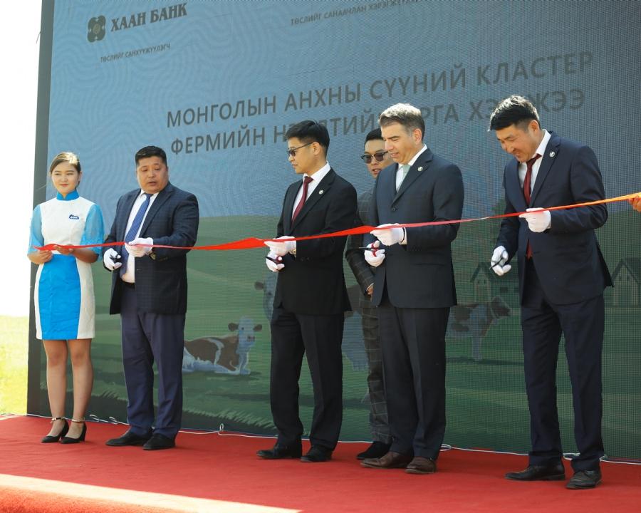 Монголын анхны 400 үнээний кластер ферм үйл ажиллагаагаа эхлүүллээ
