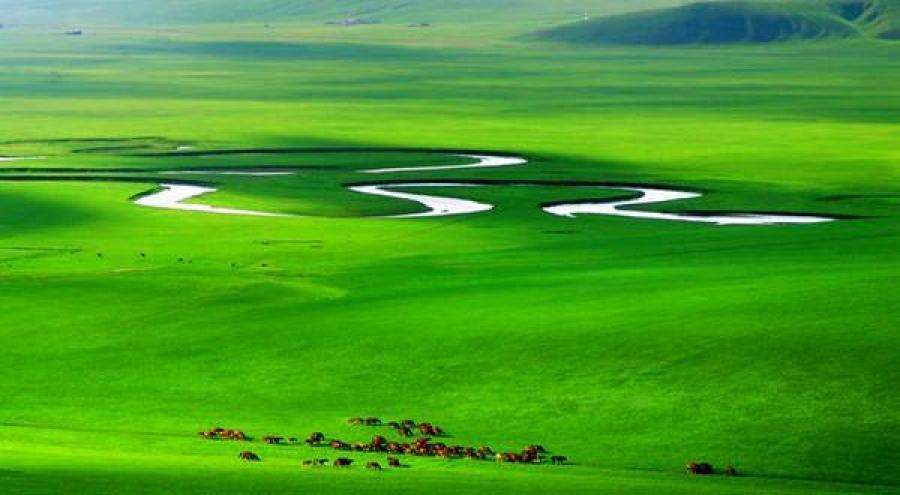 """""""Цөлжилтийг бууруулах чиглэлээр хэрэгжүүлж буй Хятад улсын туршлага"""" үзэсгэлэн болно"""