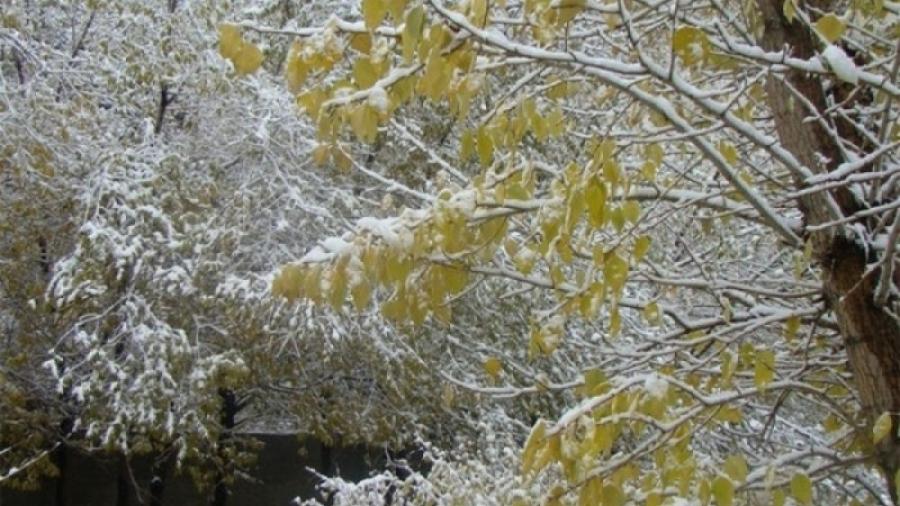 Уулархаг нутгаар нойтон цас орж, сэрүүснэ