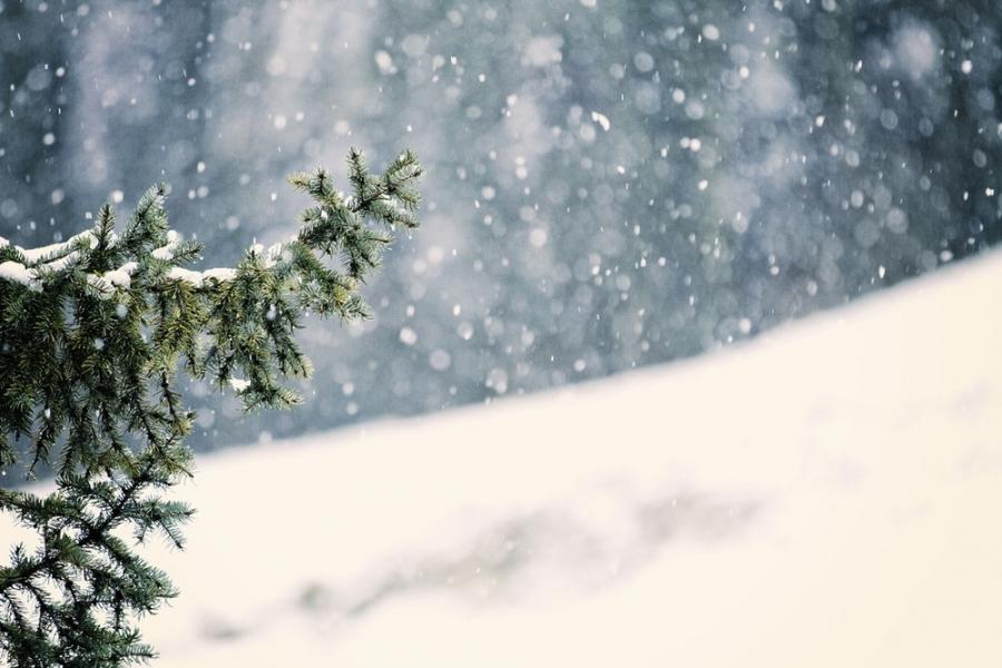 Бага зэргийн цас орж, зөөлөн цасан шуурга шуурна