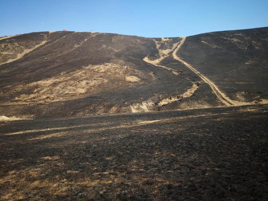 Богд Уулын Соёмботой ууланд гарсан түймрийг бүрэн утнраалаа