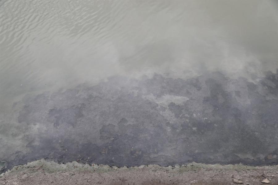 Туул голын усанд хүн, мал, орчинд аюултай 15 хорт элемент агуулагдаж байгаа