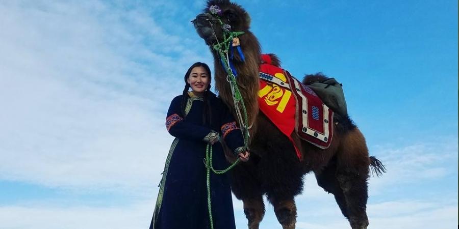 Тэрслүү тэмээчин