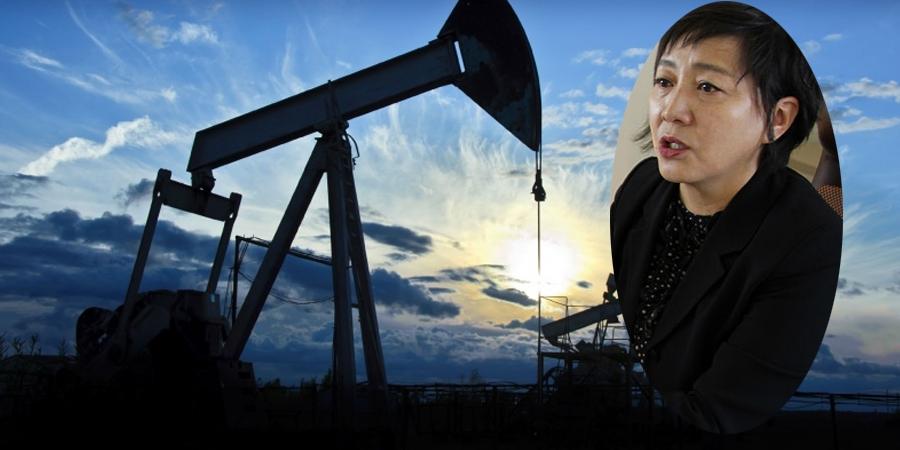 Д.Алтанцэцэг: Нефтийн үйлдвэр барих амархан, төлөвлөхөд л хугацаа ордог
