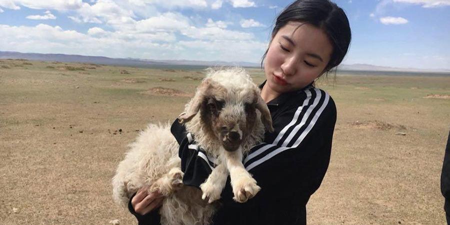 Юүн А Хён: Монголчуудын тайван зан их таалагддаг