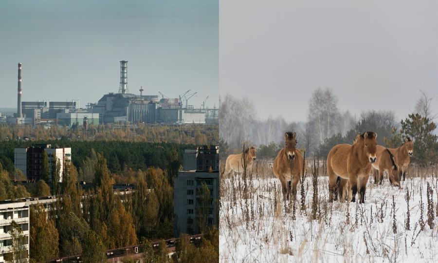 Чернобыль аяллын тэмдэглэл