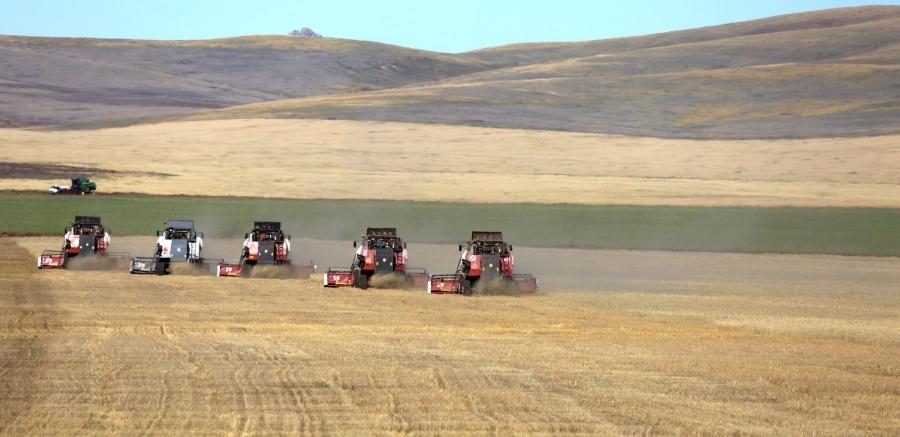 Ургац хураалтад 10 мянга гаруй хүн хөдөлмөрийн гэрээгээр ажиллаж байна