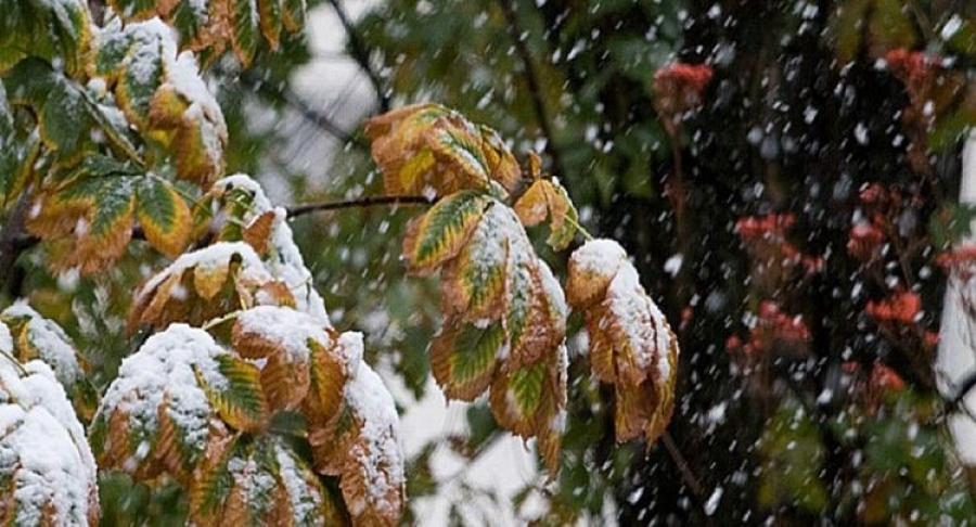 Өнөөдөр Хөвсгөлийн нутаг, Булганы хойд хэсгээр нойтон цас орно