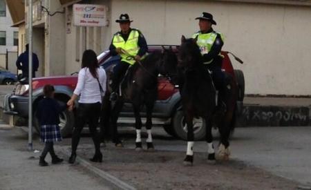 Морьт цагдаа нарын морийг зарахаар болжээ