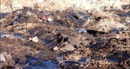 Хэвийн хэмжээнээс хэтэрсэн хөрсөн дэх хар тугалга гүний усанд нөлөөлөх аюултай