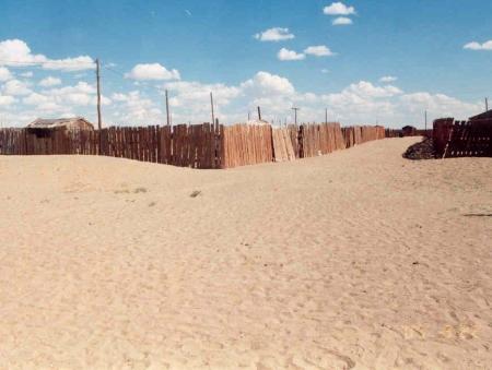 Монгол орны 72 хувь нь цөлжилтөд өртжээ