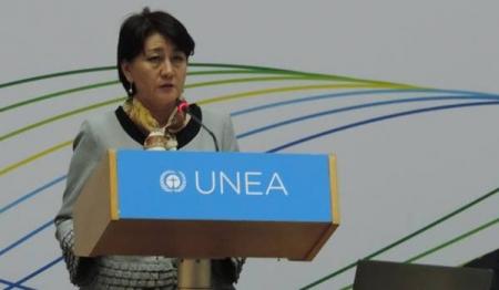 С.Оюун НҮБ-ын Байгаль орчны Ассамблейн даргаар сонгогдлоо