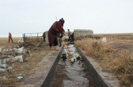 60 суманд мал угаах цэг байгуулна