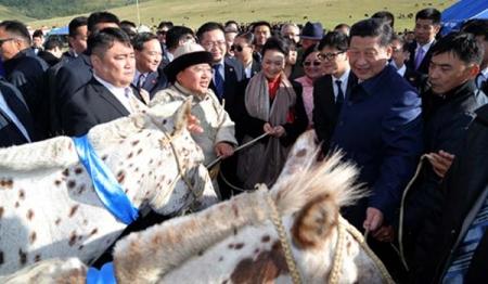 Си Зиньпинд цоохор зүсмийн морьд бэлэглэжээ