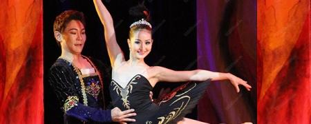 Ц.Цолмонбуд: Солонгосын театр бүжигчиддээ зэрэглэл тогтоодог