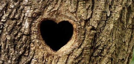 Байгалийн зүрхэн тогтоц - Valentine's Day