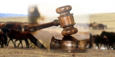 Олон аймаг дамжин үйлдэгдсэн хулгайн гэмт хэргийг шүүхээр эцэслэн шийдвэрлүүлжээ