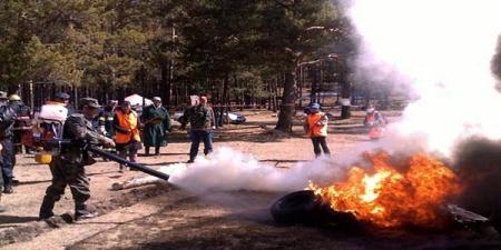 Ой хээрийн түймрээс урьдчилан сэргийлэх үзлэг шалгалтыг ногоон бүсэд зохион байгуулна