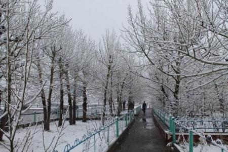 Амралтын өдрүүдэд нойтон цас орно