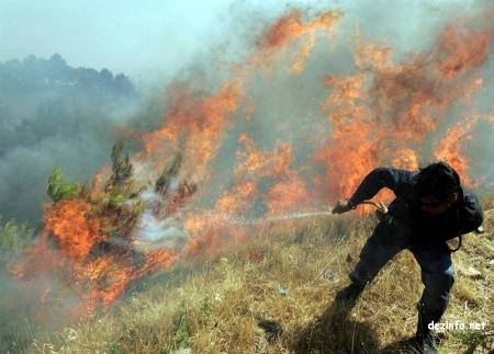 Гал түймрийн аюулаас сэрэмжлүүлж байна