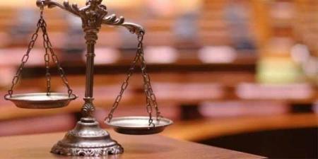 Шүүх байгуулах тухай хуулийн төслийн талаар мэдээлэл хийв