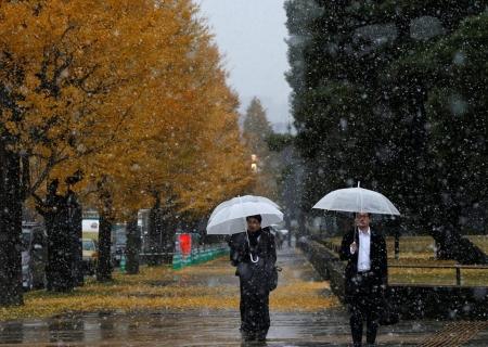 Токио хотод 54 жилийн дараа 11-р сард цас орлоо