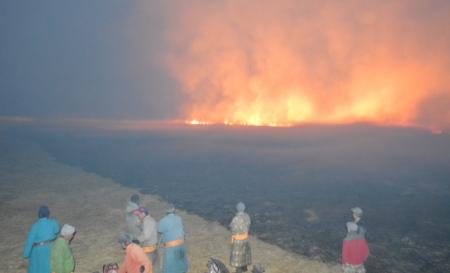 Ховд аймагт зэгсний түймэр гарчээ