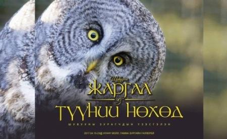 """""""Шувууны Жаргал ба түүний нөхөд"""" гэрэл зургийн үзэсгэлэнг нээнэ"""