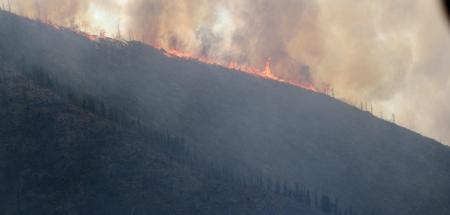 Улсын хэмжээнд 12 түймэр асч байна
