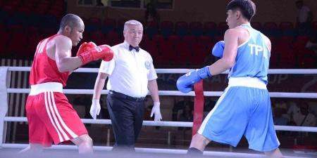 """""""Улаанбаатар цом"""" тэмцээнд 13 орны боксчид хүч үзэж байна"""