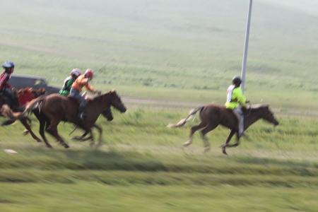 """Хурдны морь унуулж хүүгийнхээ амийг хохироочихоод """"гомдолгүй"""" гэжээ"""