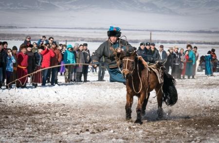"""""""Талын түмэн адуу"""" арга хэмжээ Монголын түүх, соёлыг таниулна"""
