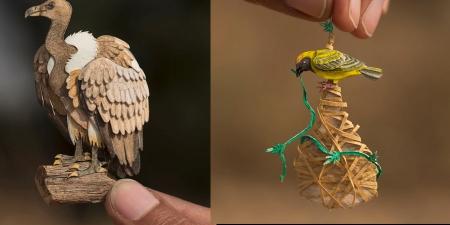 Бяцхан цаасан шувууд