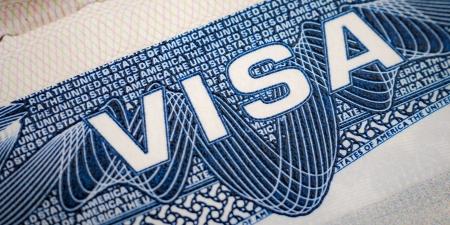 Виз хүсэгчдийн цахим хаягийг шалгана