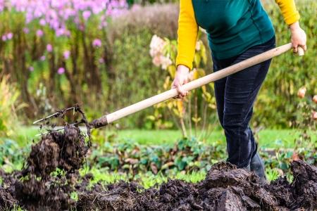 Хөрсний гүнд агуулагдах нүүрстөрөгчийн нууц
