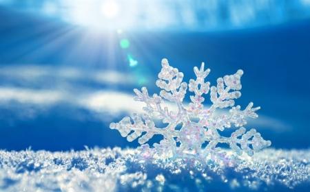 Өнөөдөр нутгийн хойд хэсгээр цас орно