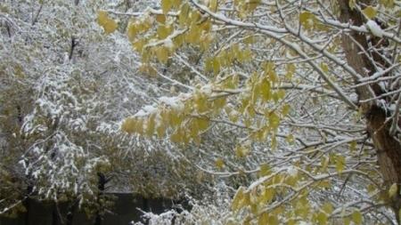 Өнөөдөр нутгийн зүүн хагаст хүйтэн салхитай байна