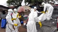 Дэлхийн 10 оронд 24035 хүн Эбола вирусээр өвчлөөд байна