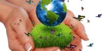 """Энэ сарын 28-аас """"Байгаль хамгаалах намрын аян"""" орон даяар эхэлнэ"""