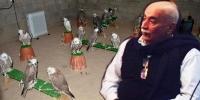 Шонхор шувууны асуудлаар Абдул Каримд хариуцлага тооцжээ