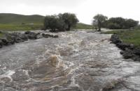 Гол усны аюулд 18 хүн өртжээ