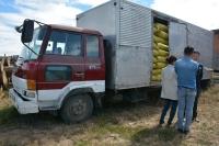 10 тонн цайруулсан самар хураан авчээ